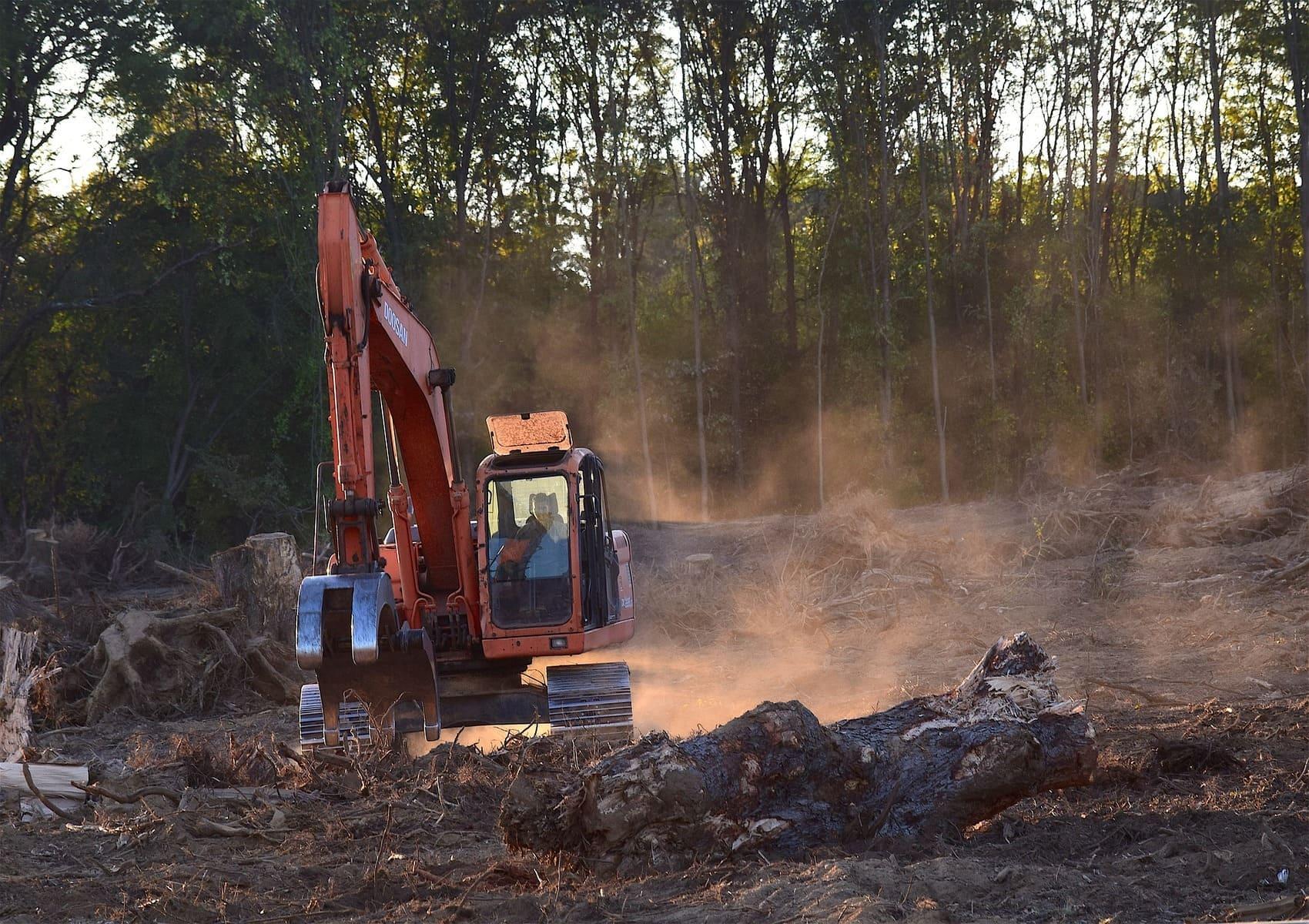 Deforestazione in Amazzonia