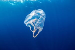 Manta, il catamarano che ripulisce gli oceani dalla plastica: partenza prevista nel 2024.