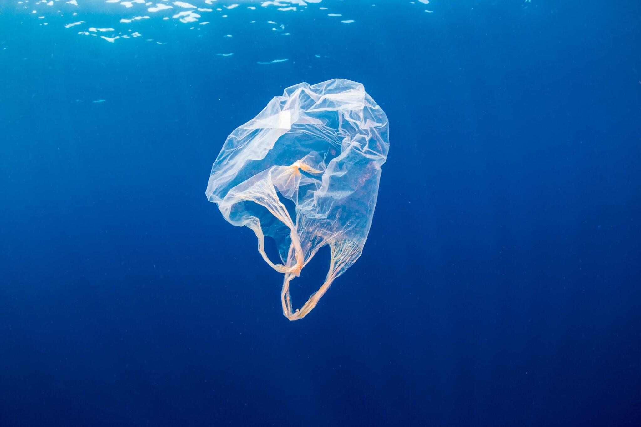 inquinamento plastica